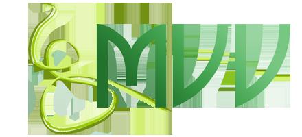 Gründung der Firma M.V.V.